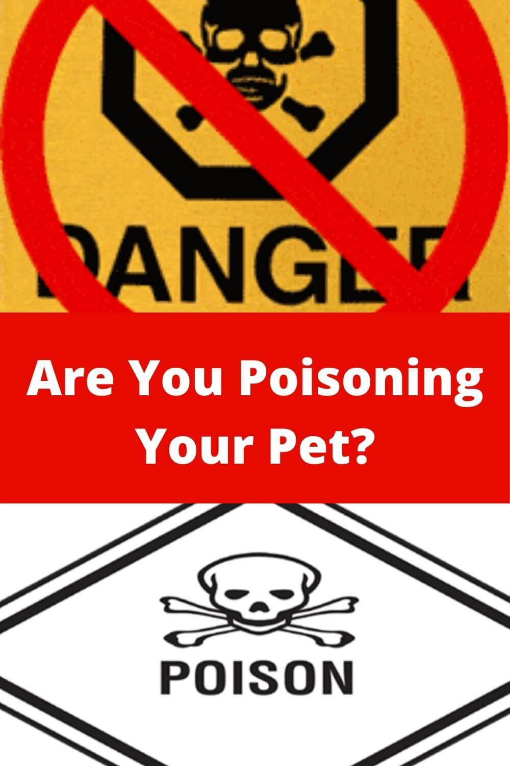 Are You Poisoning Your Pet?