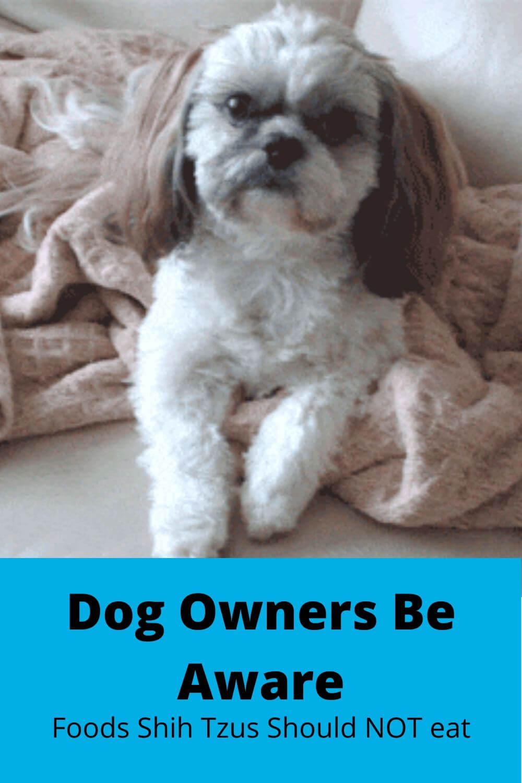 Dog Onwers Be Aware