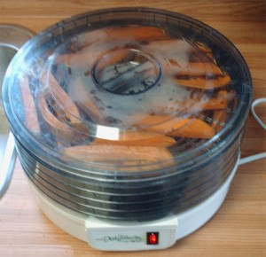 dehydrator filled with yam pieces and running