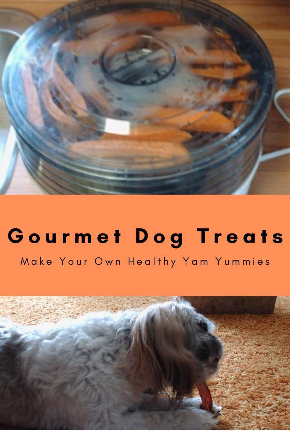 Gourmet dog treats - yam yums for dogs