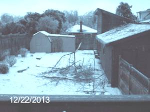 22 Dec 2013 - back yard