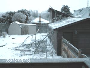 23 Dec 2013 back yard