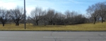 photograph of my view of the park across the road from my home, used as a header image