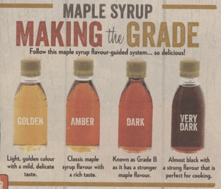image showing the different grades of maple syrup that Sobeys had in their sale flyer