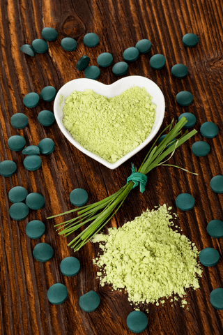 sun chlorella powder in heart shape dish on hard surface with sun chlorella tablets around it, and more powder shown on hard surface below the dish