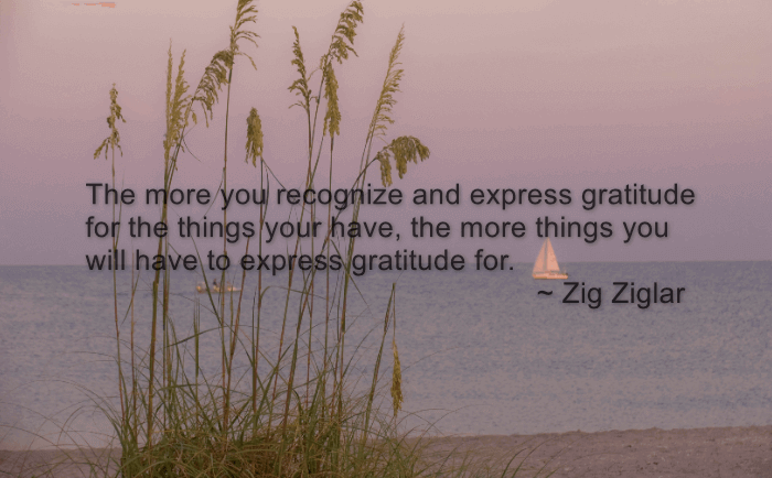 a quote by Zig Ziglar over top an image