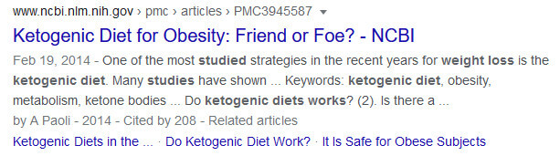 screen print of Google search Ketogenic Diet for Obesity...